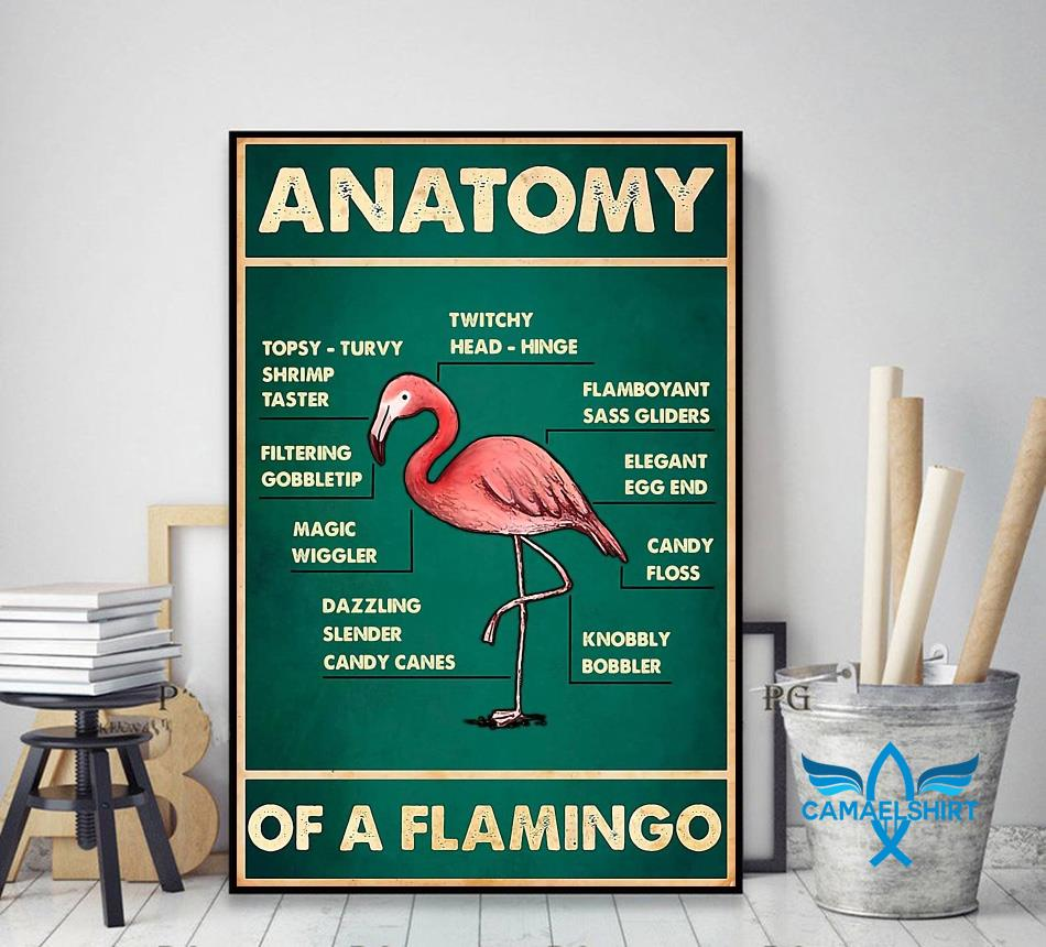 Anatomy of a flamingo poster canvas decor art