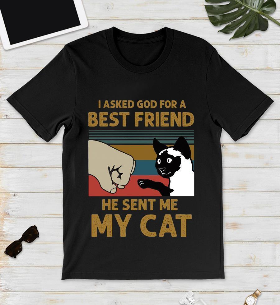 I asked God for a best friend he sent me my cat vintage t-s unisex