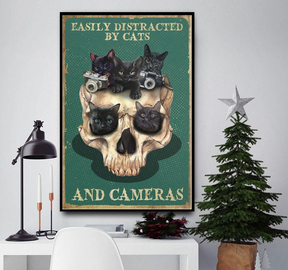 Skull easily distracted by cats and cameras poster