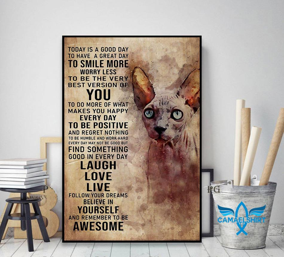 Sphynx cat today is a good day poster decor art