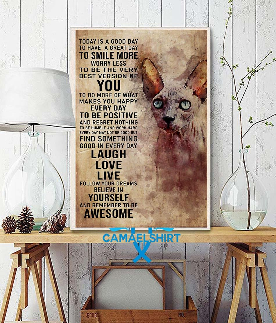 Sphynx cat today is a good day poster wall decor
