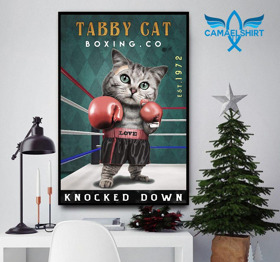Tabby Cats Boxing knocked down poster canvas