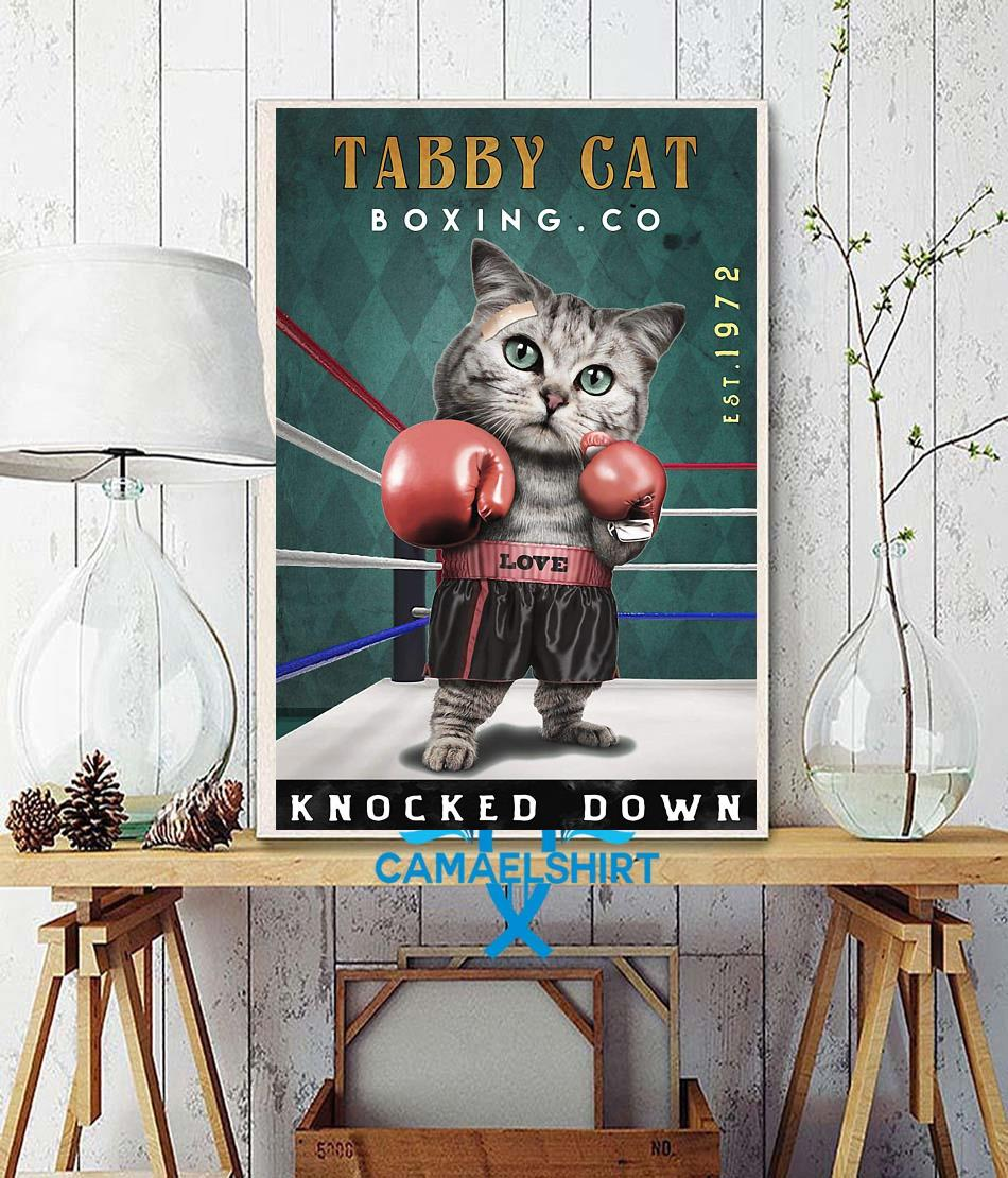 Tabby Cats Boxing knocked down poster canvas wall decor
