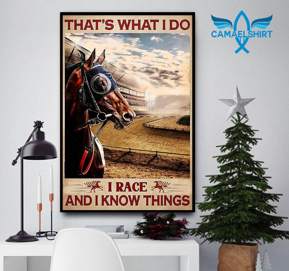 Horse racing that's what I race and I know things poster