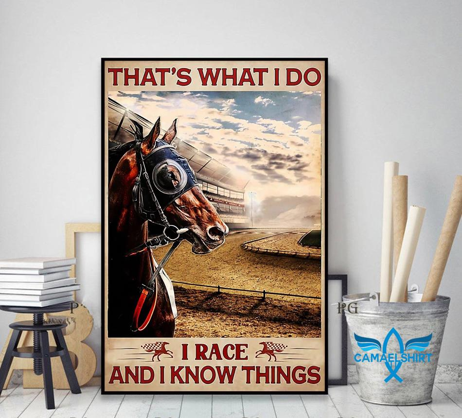 Horse racing that's what I race and I know things poster decor art