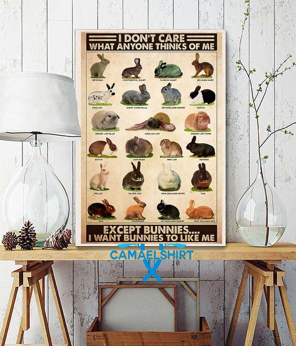 I don't care what anyone thinks of me except bunnies poster wall decor