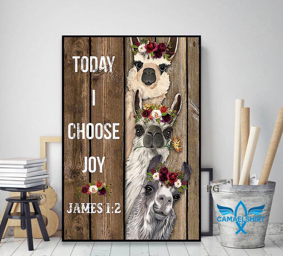 Alpaca flower today I choose joy poster decor art