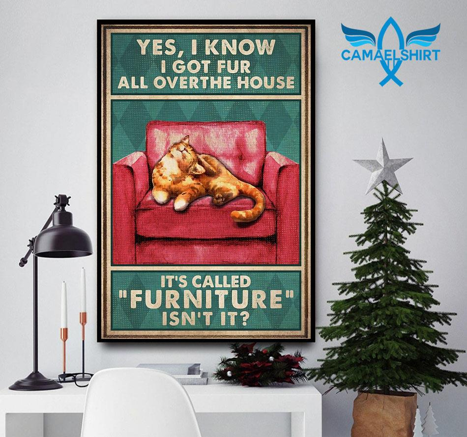 Cat yes I know I got fur all over the house it's called furniture poster