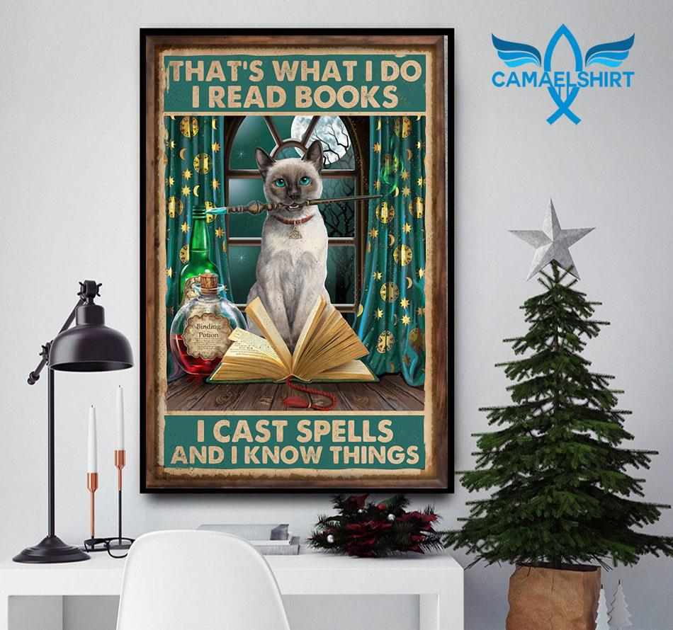 Magic cat that's what I do I read books cast spells and I know things poster